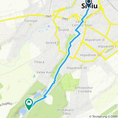 Pista Biciclete Sibiu, Piata Mare - Muzeul Satului