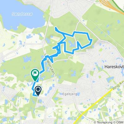 Løberute - Trail - Lille Hareskov - hele nye spor