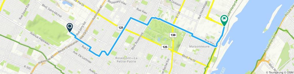 Slow ride in Montréal