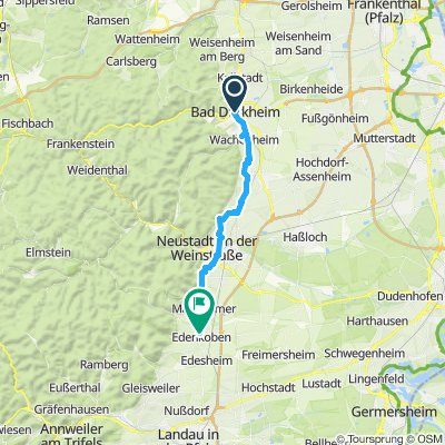 E-Bike-Tour in der Pfalz
