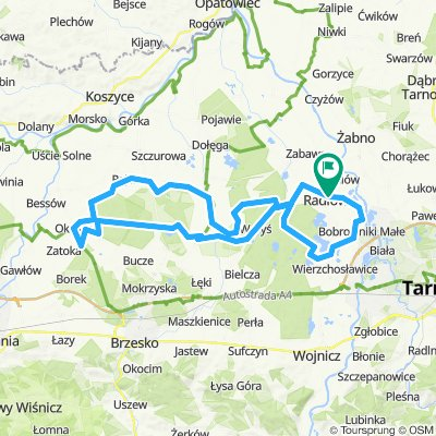 Radlow-Rudka-Okulice-Borzecin-81km