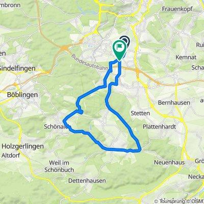 Moe_Waldenbuch ü Musberg Schönaich 7mTal Leinf (32km)