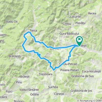 Mocearu lake MTB ride
