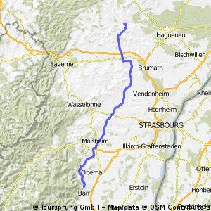 Tour 2010: 2. Etappe Pfaffenhoffen - Heiligenstein