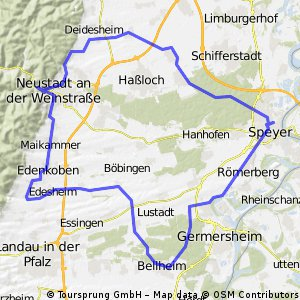 Rund um den Kaiserdom - RTF des RSC Vorwärts Speyer e.V. - 84 km Strecke