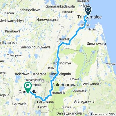 Trincomalee - Dambulla (Golden Temple) (Sri Lanka Spice Tour Stage 2)