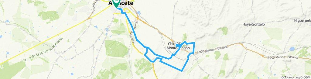 chinchilla 2019-09-19