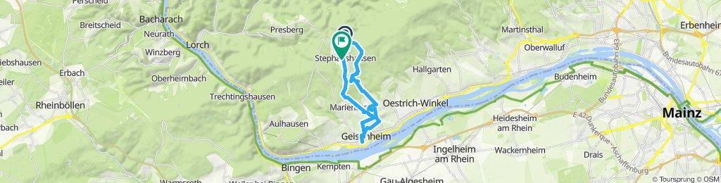 Gerade Fahrt in Geisenheim