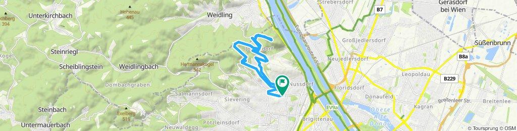 Grinzing- Kahlenberg-Krapfenwald