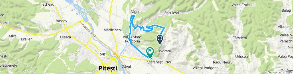 Ștefănești wine trails