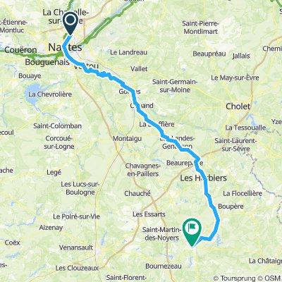 Nantes Chantonay