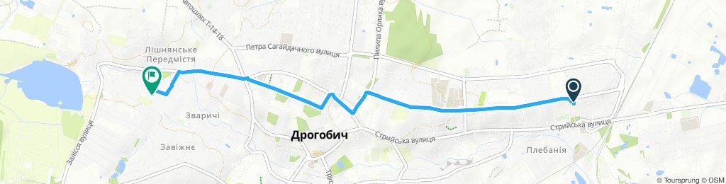 Легкий маршрут в Дрогобыч