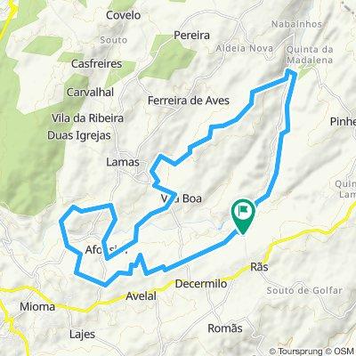 Trail Longo