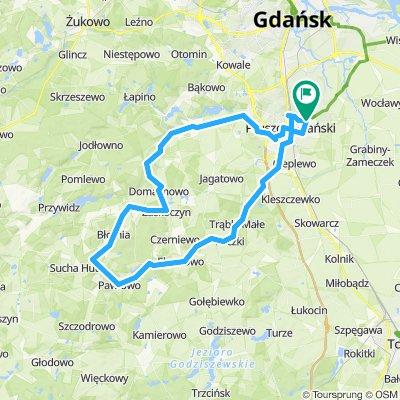 Pruszcz Gd.-Straszyn-Pręgowo-Buszkowy-Zaskoczyn-Pawłowo-Ełganowo-Trąbki Wlk.-Pruszcz Gd