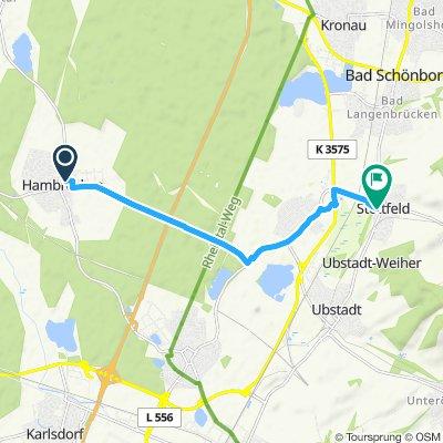 Mörderische Fahrt in Ubstadt-Weiher