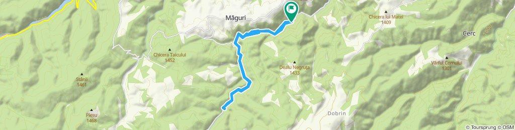Hideg-Szamos-völgyszoros - Irisóra-völgy