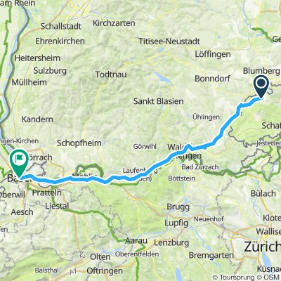 Basel blumjerg