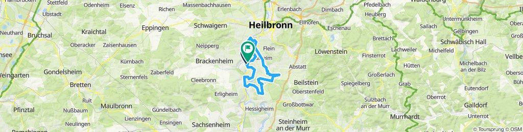 Lauffen - Kirchheim - Gemmrigheim - Obrigheim - Neckarwestheim - Ilsfeld - Talheim - Horkheim - Lauffen