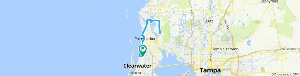 20 miles northish and back, majority Pinellas trail