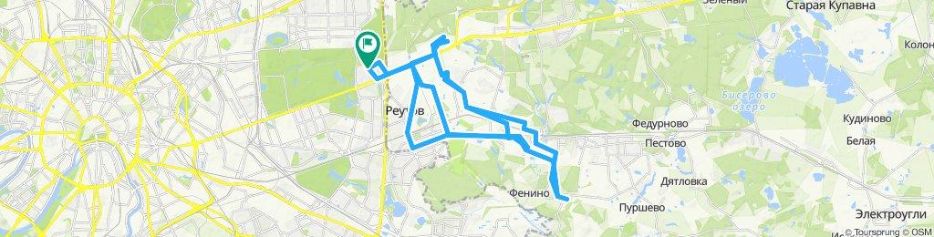 Осенние велоездки тягомотные Балашиха: Кучино -  Новое Измайлово (дважды) и Павлино 14 10 2019