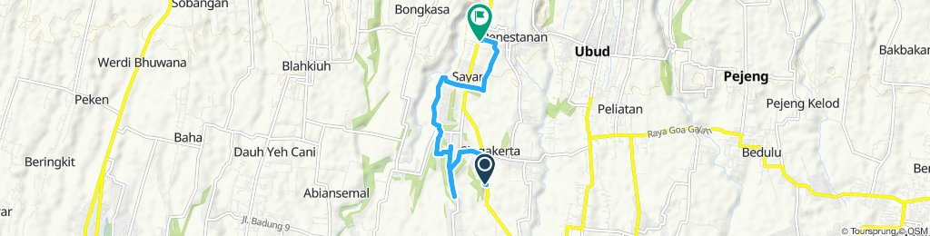 Relaxed route in Gianyar