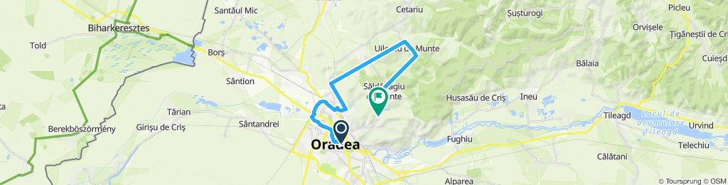 Oradea - Paleu - Uileacu de Munte - Săldăbagiu