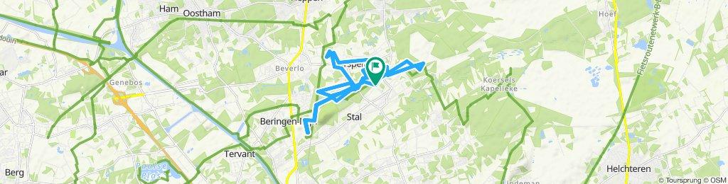 Ontspannen route in Beringen vrije tijd