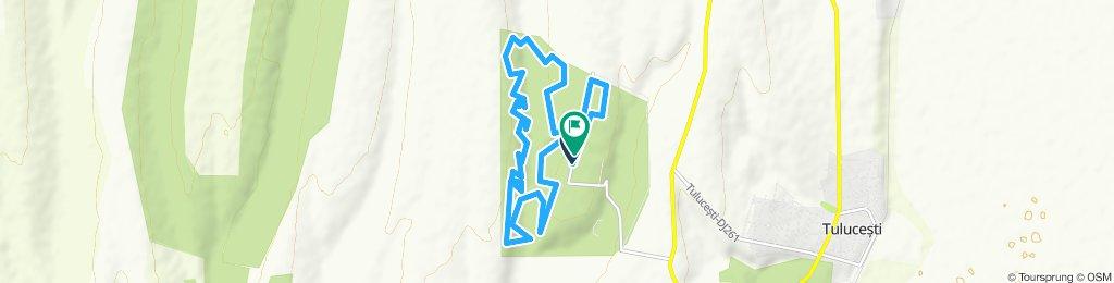 Garboavele Trail Run
