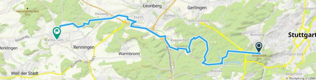 3. Fahrt E-Bike 2/2 ( 1C* ) Birkenkopf