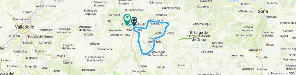 MARZO 2020, ARANDA DUERO (1)