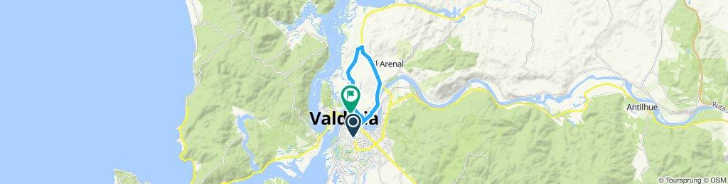 Paseo lento en Valdivia