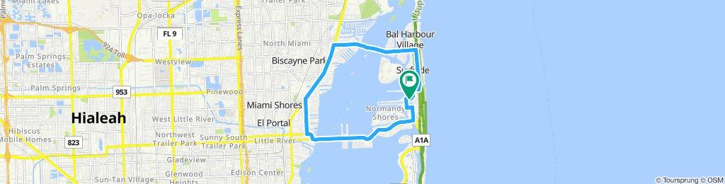 Cracking ride in Miami Beach