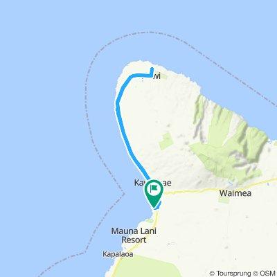 aller retour Hapuna beach a Hawi