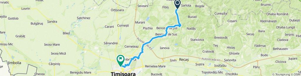 Remetea Mica - Timisoara - v3