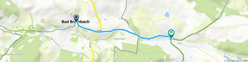 Bad Brambach - Plesna