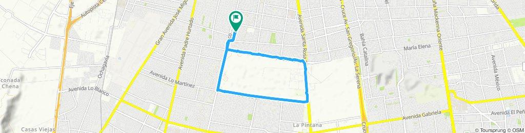 Paseo lento en La Pintana