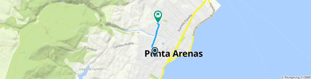 Paseo lento en Punta Arenas