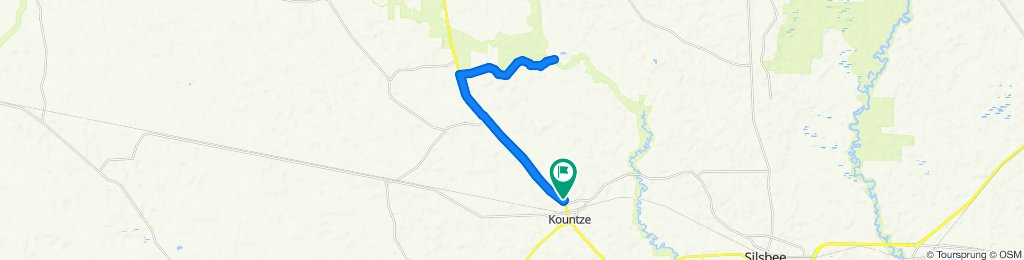 Kountze trail ride to the Village Creek Bridge on the Domane 6.2.
