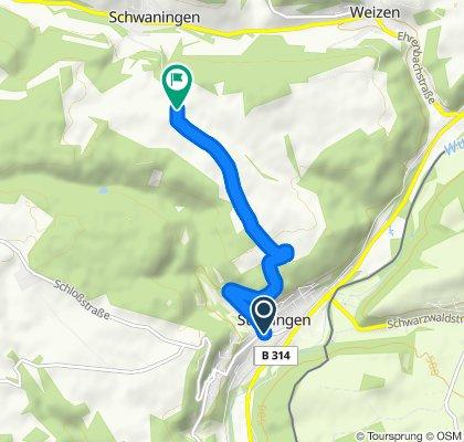 Stühlingen - Kalvarienberg, 668m