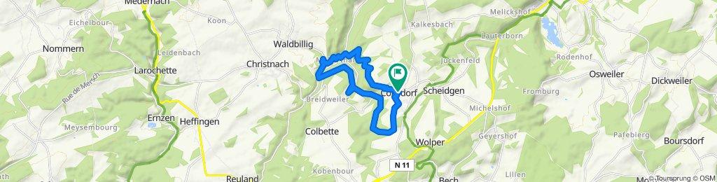 Wnd Mullerthal 13km 240hm