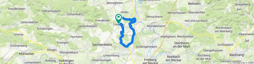 Einfache Fahrt in Löchgau