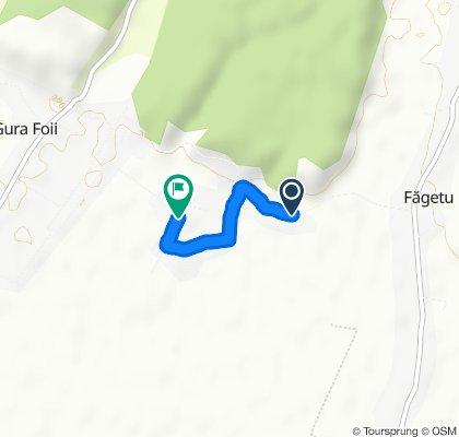 Steady ride in Gura Foii