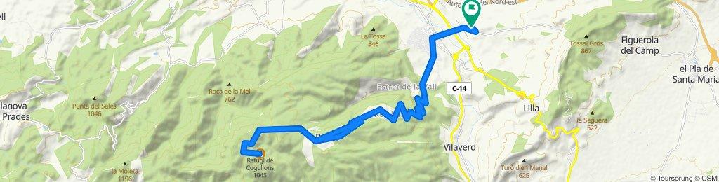 Mont Blanc (Refugi del Cogullons)
