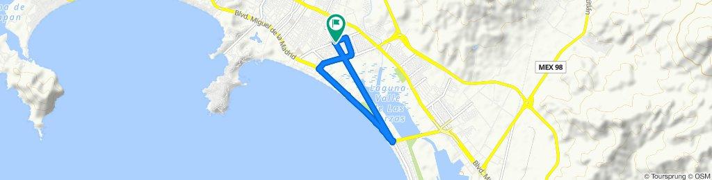 Paseo rápido en Manzanillo