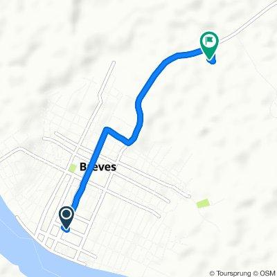 Passeio rápido em Brev