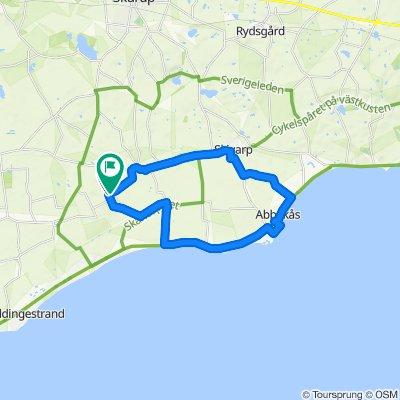 Pillehill Hotell - Abbekås hamn - 22 km