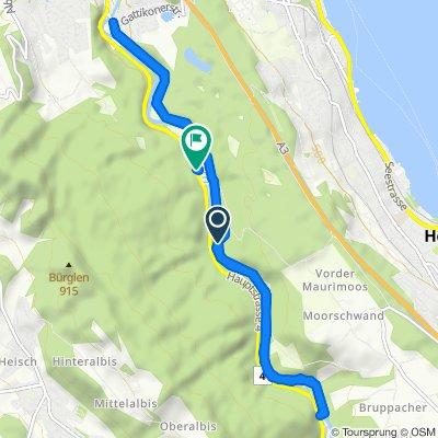 Entspannende Route in Horgen