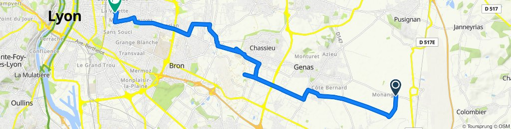 Устойчивая езда в Lyon