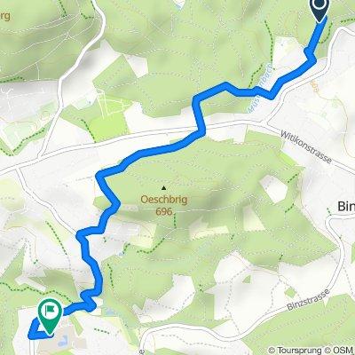 Steady ride in Zollikerberg