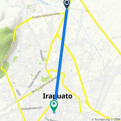 Ruta constante en Irapuato